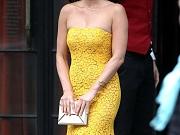 Olivia Munn in see through dress